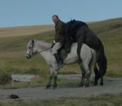 Om heste og mænd // 19. mar